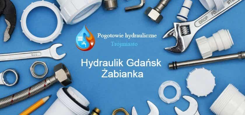 hydraulik gdańsk żabianka